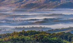 Mangunan fog layers