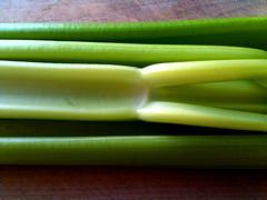 vegetable, welsh onion, green, produce, food, scallion,