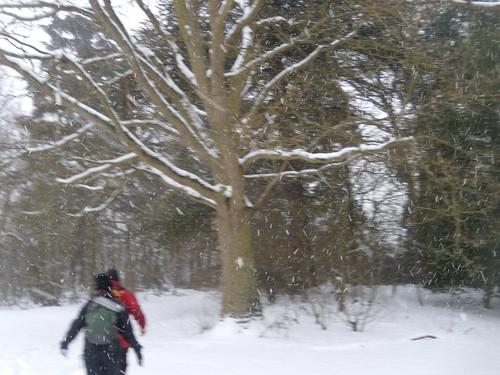 DSCN8404 On through the snow