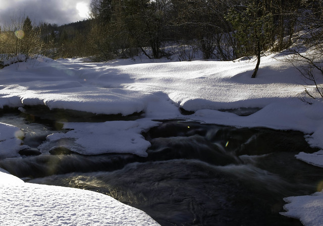 vinter i Mostadmark 003