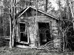 Shack, Wallisville - Turtle Bayou Rd 0310101530BW