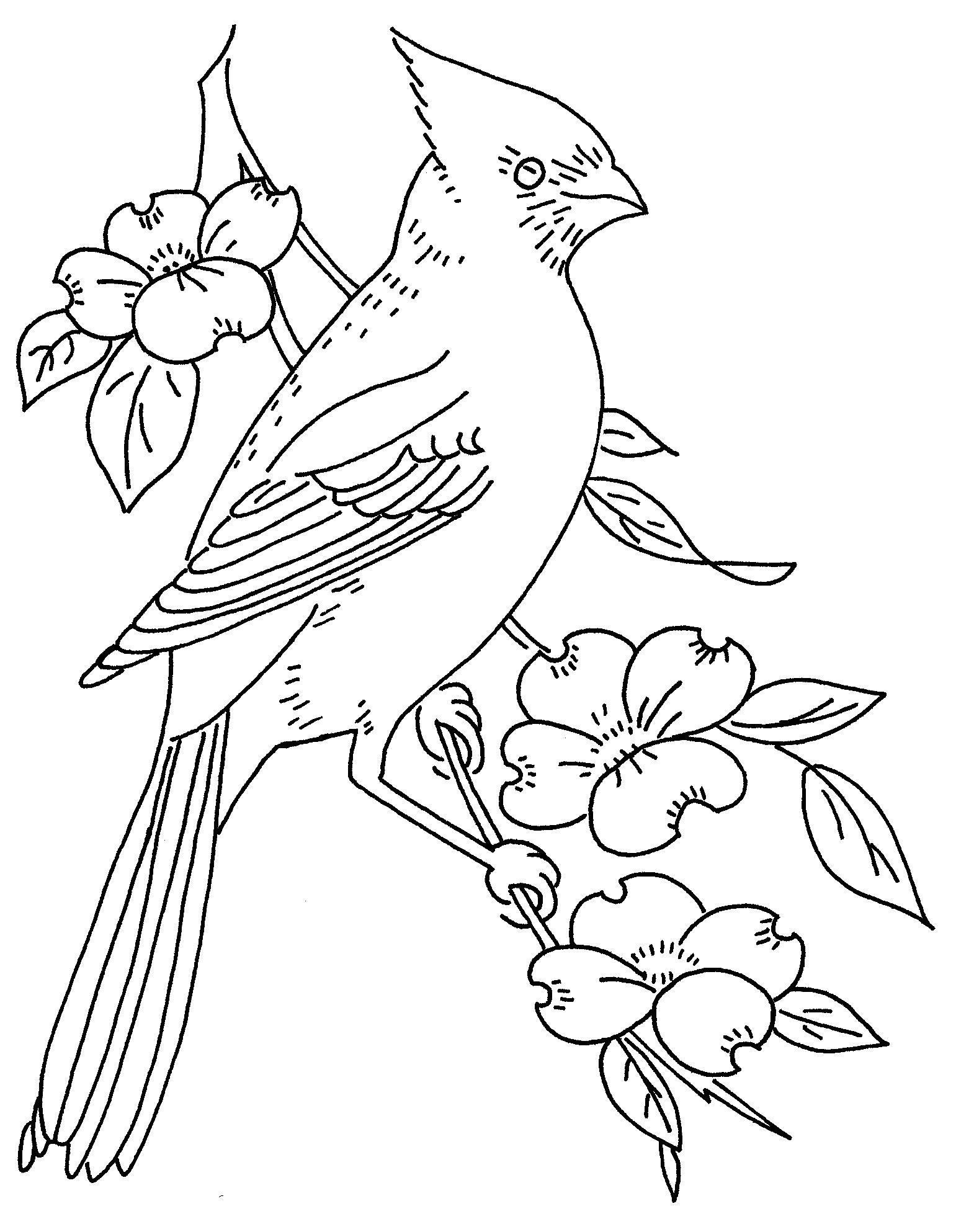 bird and dogwood