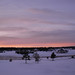 Winter Sunset - 102