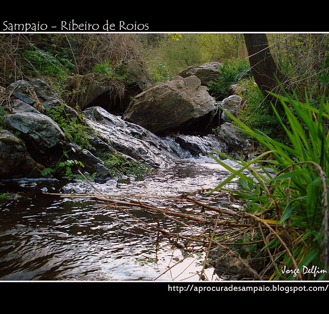 Sampaio - Ribeiro de Roios (2)