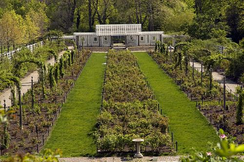 The Cranford Rose Garden Brooklyn Botanic Garden Brooklyn New York A Photo On Flickriver