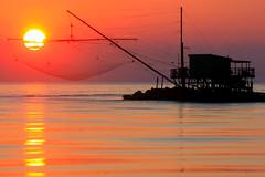 Il sole cade nella rete / The sun falls in the net (Pisa, Tuscany, Italy)