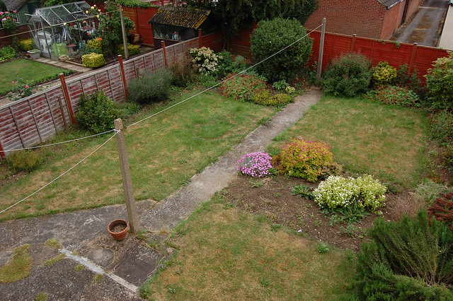 A view of the back garden in June 2010