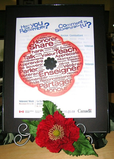 Remembrance Day - Poppy - Veteran's Week (November 5 - 11, 2010)