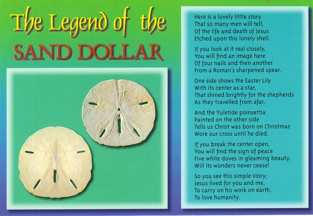 Legend of the Sand Dollar postcard - available