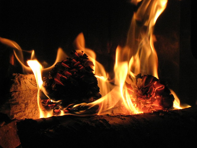 Feu de chemin e flickr photo sharing - Photo feu de cheminee ...