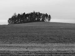 Bohemia December 2009