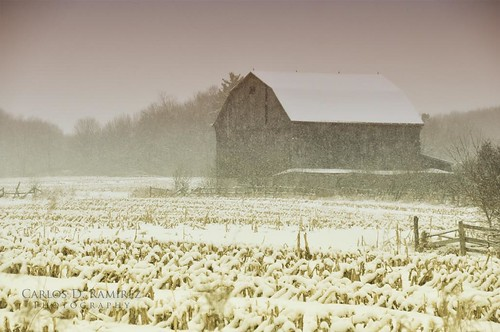 winter snow ontario canada barn landscape nikon sigma explore snowing richmondhill gp1 d90 carlosdramirez cdr35