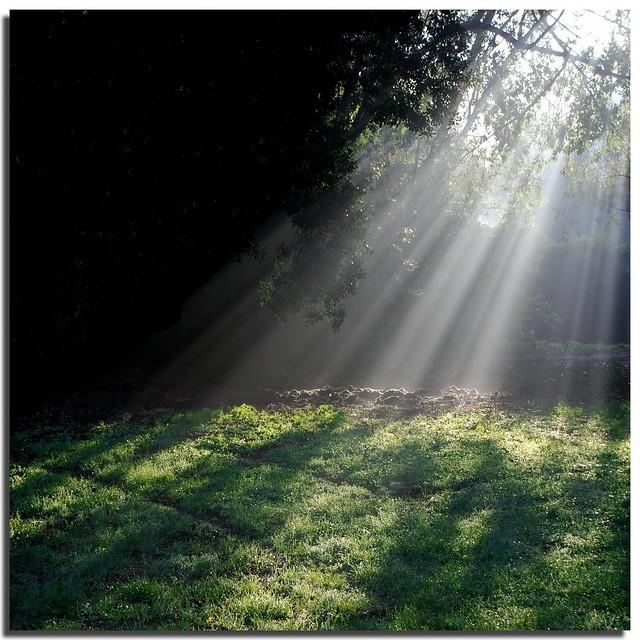 Diagonale di luce