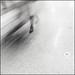 in motion, elegance by Dreamer7112