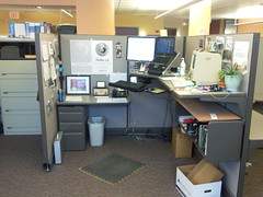 New cubicle