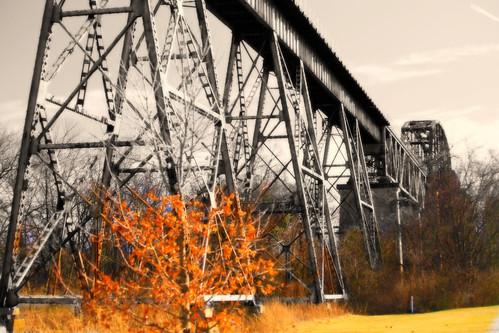 park railroad nature nashville tennessee wetlands marsh railroadbridge cumberlandriver naturalarea shelbypark traintressel shelbybottoms eugenelewis