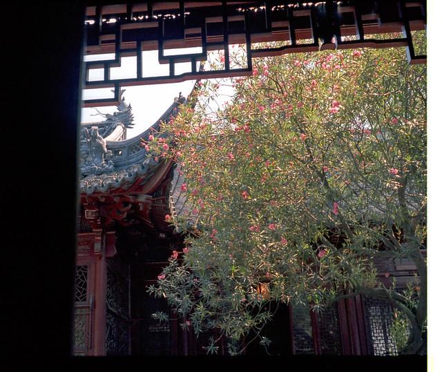 Giardino cinese yu yan garden a shanghai giardini del for Giardino cinese