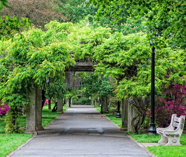 The Osborne Garden in May. Photo by Antonio M. Rosario.