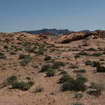 Valley of Fire 062