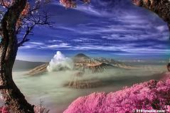 Mount Bromo, Batok & Semeru (Infrared) by 2121studio
