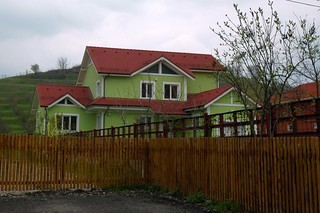 A Romanian Home (lime green)