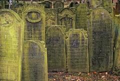 Jewish Cemetery, Hamburg-Altona