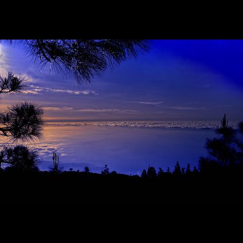 sunset sky clouds atardecer lights luces spain shadows silhouettes cielo nubes tenerife vegetation puestadesol 1001nights canaryislands sombras contrasts siluetas vegetación islascanarias contrastes valledelaorotava platinumheartaward nikond700 1001nightsmagiccity zeissdistagont35mmf2zf2 1004261072nef