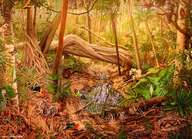 Sea acres rainforest nature reserve australian for Australian mural