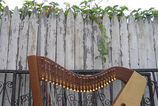Rustic Harp Backdrop | by kleepet