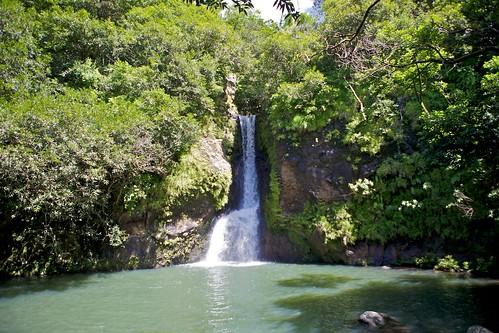 Where to go in Mauritius: visit la Vallée des couleurs.