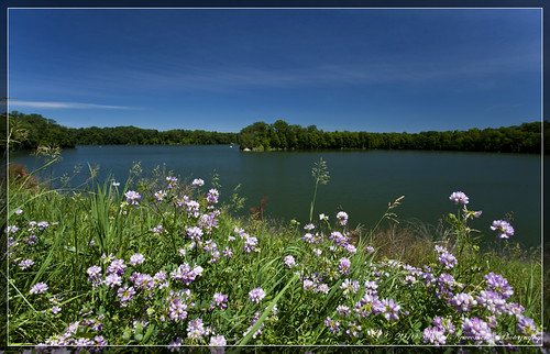 lake pond wideangle wildflowers prairie hdr caesarcreek