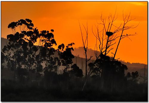 africa sunset mountains franschhoek