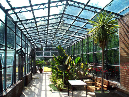 Clear Span Commercial Greenhouse Lean To Link