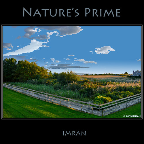 blue trees sky newyork green fall nature water yellow clouds square outdoors landscapes suffolk nikon marine seasons framed tranquility longisland 2009 imran lifestyles d300 patchogue greatsouthbay imrananwar eastpatchogue