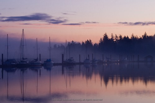 ocean morning pink trees orange canada color colour reflection tree nature water fog clouds forest sunrise landscape boats nikon sailing warf ripple ripples