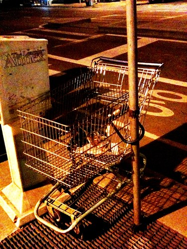 i jus saw a grocery cart w/ a bike lock,locked to a pole. #onlyinnewyork