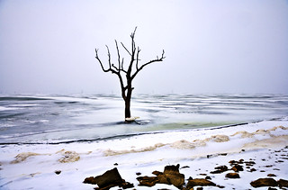Symbol of last winter