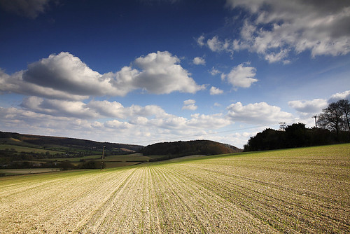 The Chilterns, Buckinghamshire, England
