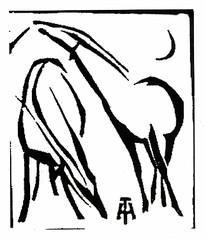 Antilopen_2