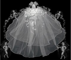 bridal clothing(0.0), dance dress(0.0), gown(0.0), skirt(0.0), costume(0.0), dress(0.0), veil(1.0), bridal veil(1.0), clothing(1.0), monochrome photography(1.0), wedding dress(1.0), black-and-white(1.0),