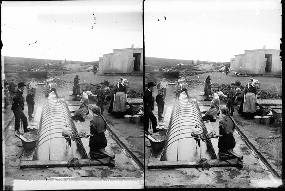 Konur við þvotta í Þvottalaugunum í Laugardal / Women washing laundry in Laugardalur, 1902 – 1910