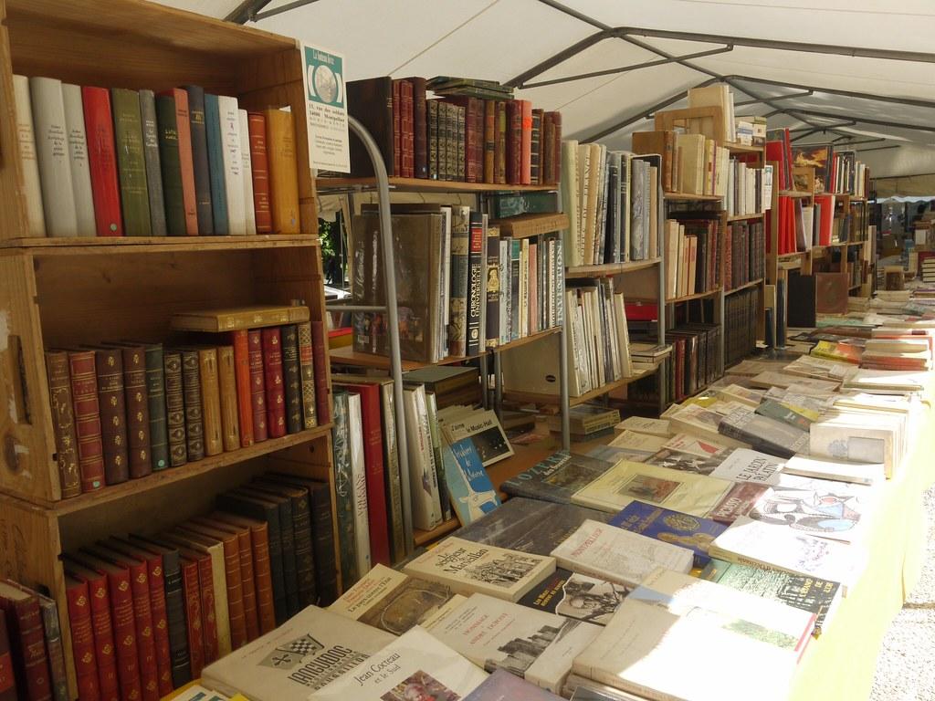 related image - Comédie du Livre 2010 - Vue d'ensemble - P1380859