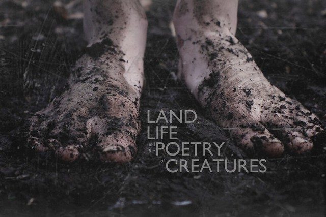 Land, Life, and the Poetry of Creatures