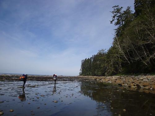 West Coast Trail - Flickr: Su-Laine