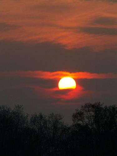 Traum zum Sonnenaufgang dein kaltes Auge am Himmel draussen segnet der fromme Tag die Tausende, die unter ihm knien, vom blauen Himmel bedeckt, vom Frühling mild gestärkt. Ja wohl bist du, noch heut kommt die Königin der Welt nach Dresden Pillnitz  016
