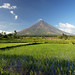 Mount Mayon by joycicle