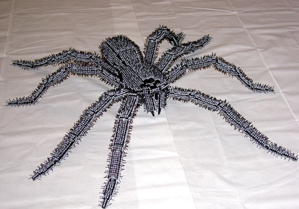 Think, pictures of big huge hairy spiders