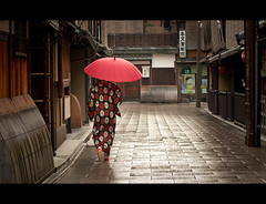 Rainy Morning In Kyoto