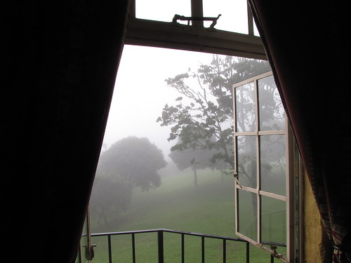 Mist through the window