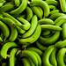 Bananos orgánicos  en Mao